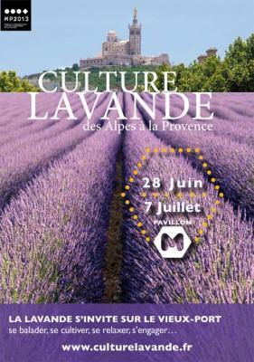 culture-lavande